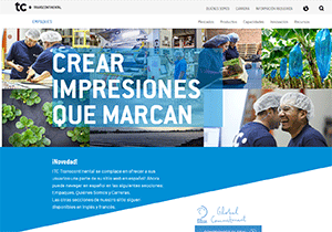 Website in Spanish